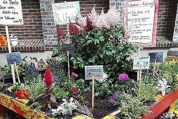 Urban_Gardening_1.jpg